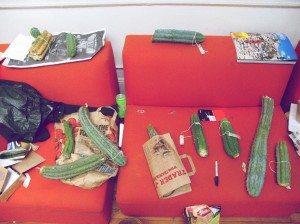 Hamilton's Cacti Couch