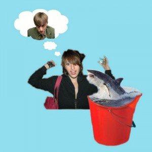 rp_shark.jpg