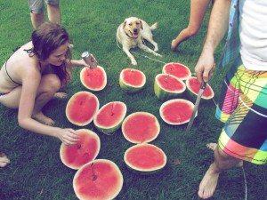 watermelon contest